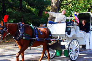 fun in new york - central park carriage rides