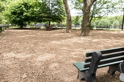 dog park in brooklyn
